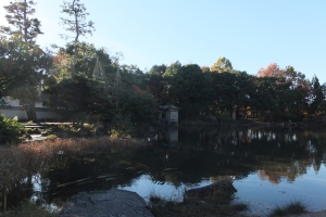 Youkou-kan, A Japanese Garden in Fukui