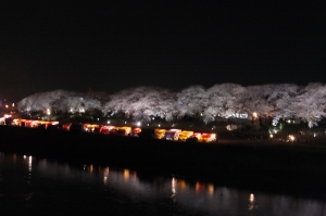 Night View of Asuwa, Fukui
